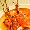 千葉ブランドの外房イセエビをはじめとした獲れたての新鮮魚料理
